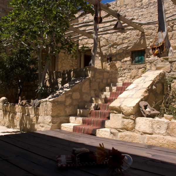 The stairs to the upper level with the fig tree.